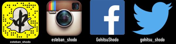 socialmediaicons